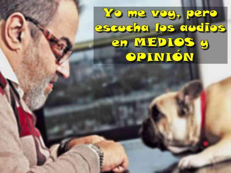 Lanata Y El Perro Medios Y Opini 243 N