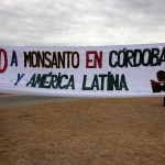 Demandan al estado nacional por el uso de agroquímicos pero Monsanto no se detiene